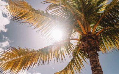 Saveti za zdravo sunčanje – koju vrstu kreme za sunčanje izabrati?